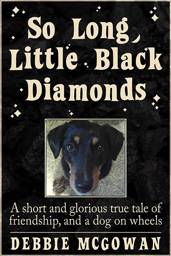 So Long, Little Black Diamonds Cover