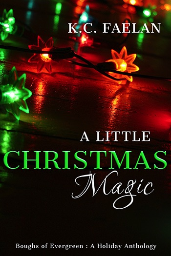 A Little Christmas Magic Cover