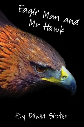 Eagle Man and Mr Hawk Cover