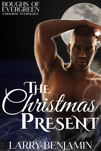 The Christmas Present Cover
